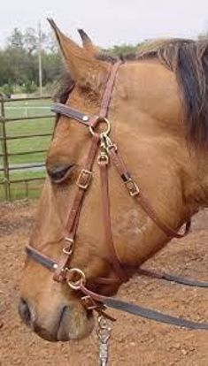 Picture of Freedom Bridle